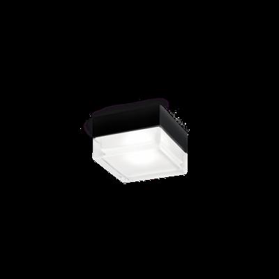 Wever & Ducré Wand/Plafondlamp BLAS 2.0 LED IP65 Outdoor