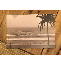 Ansichtkaart Zandvoort Palm