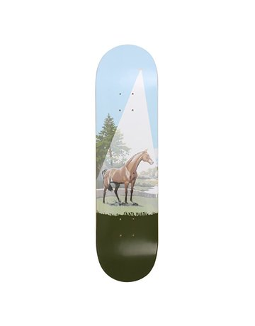 SKATE MENTAL MOTTA - HORSE ABDUCTION / BOOKS 8.125