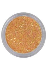 Shiny Dust Glitter 029