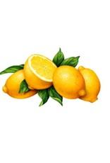 Nail Oil Lemon