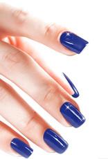 Acrylic Powder Marine Blue