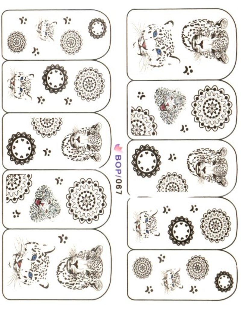 Waterdecal Circles