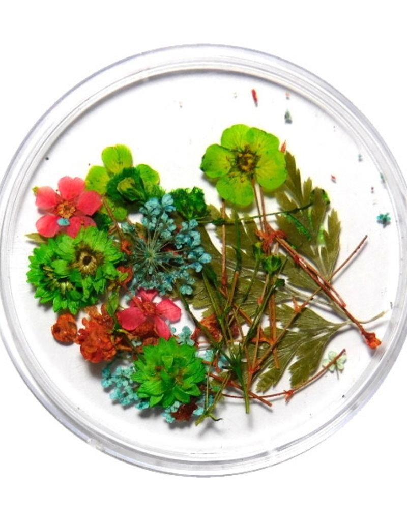 Droogbloemen Mix 3D Forest Vibes