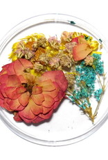 Dried Flowers Mix 3D Happy Summer