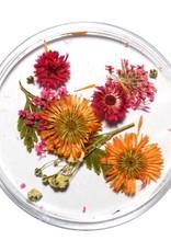 Dried Flowers Mix 3D Autumn