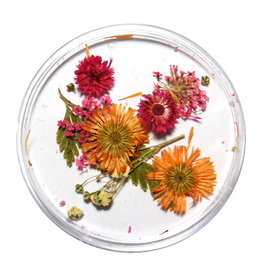 Dried Flowers Mix 3D Autumn
