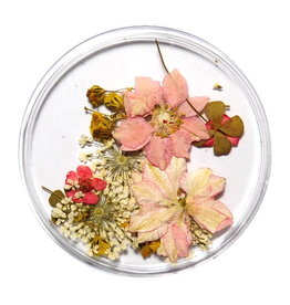 Dried Flowers Mix 3D Bright Spring