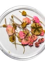 Droogbloemen Mix 3D Tiny Florals