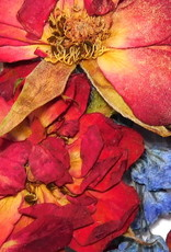 Dried Flowers Mix 3D Oceanside