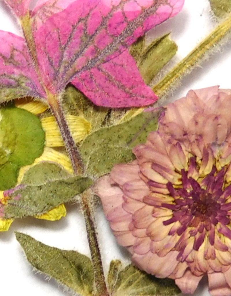Dried Flowers Mix 3D Desert