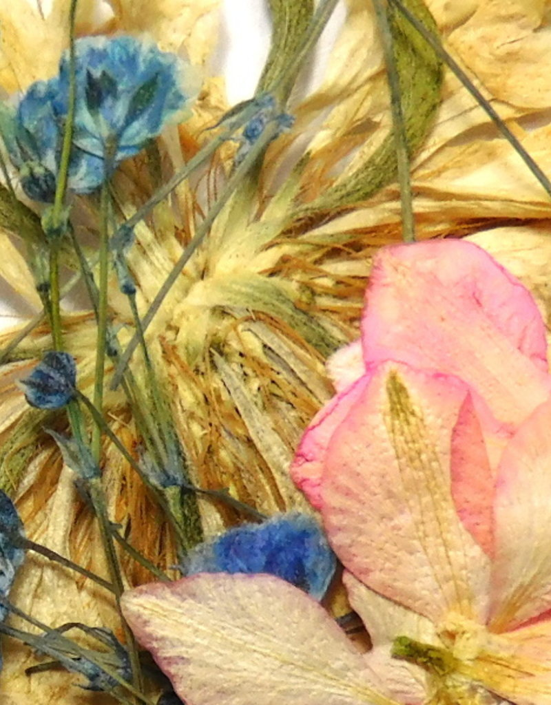 Dried Flowers Mix 3D At The Lake