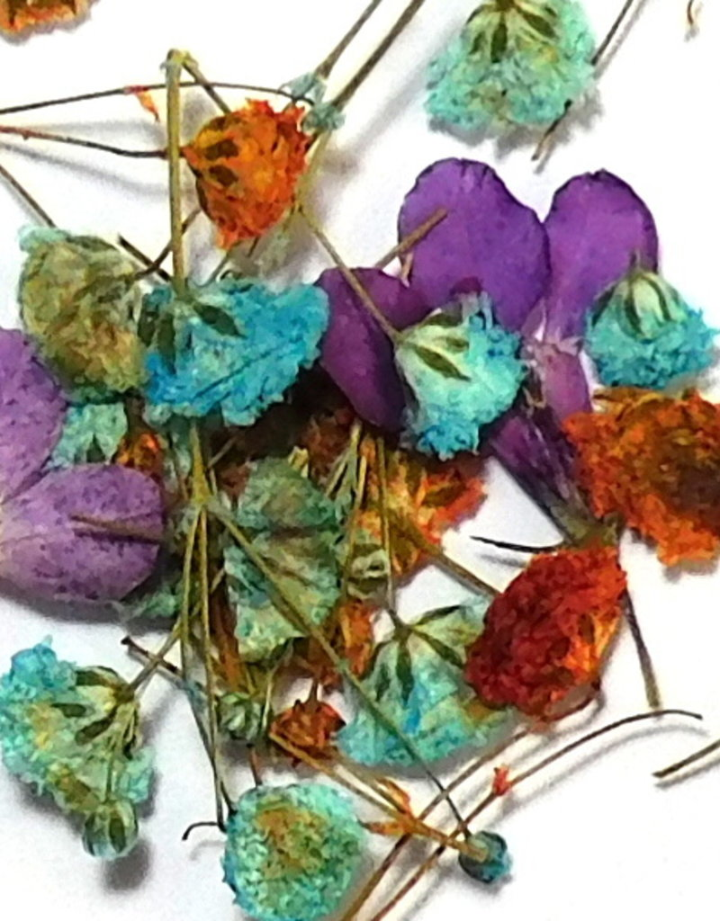 Dried Flowers Mix 3D Flowerbomb