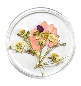 Dried Flowers Mix 3D Pretty In Pastel