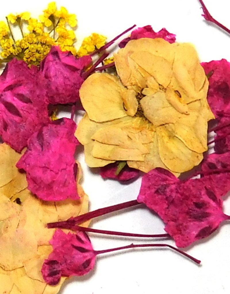 Dried Flowers Mix 3D Moonlight Stroll