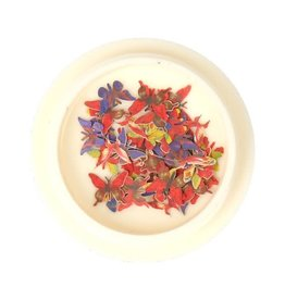 3D Butterfly Inlay Red