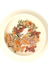 3D Butterfly Inlay Orange