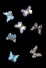 3D Butterfly Inlay Blue
