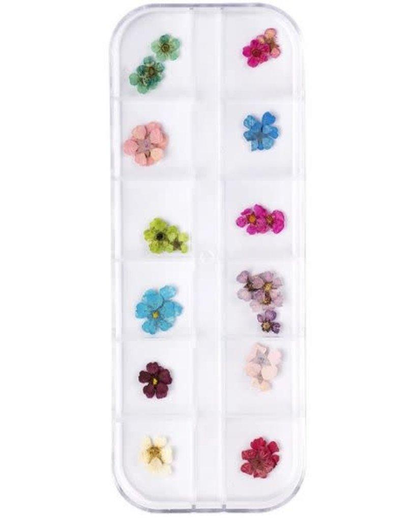 Droogbloemen Set Happy Floral