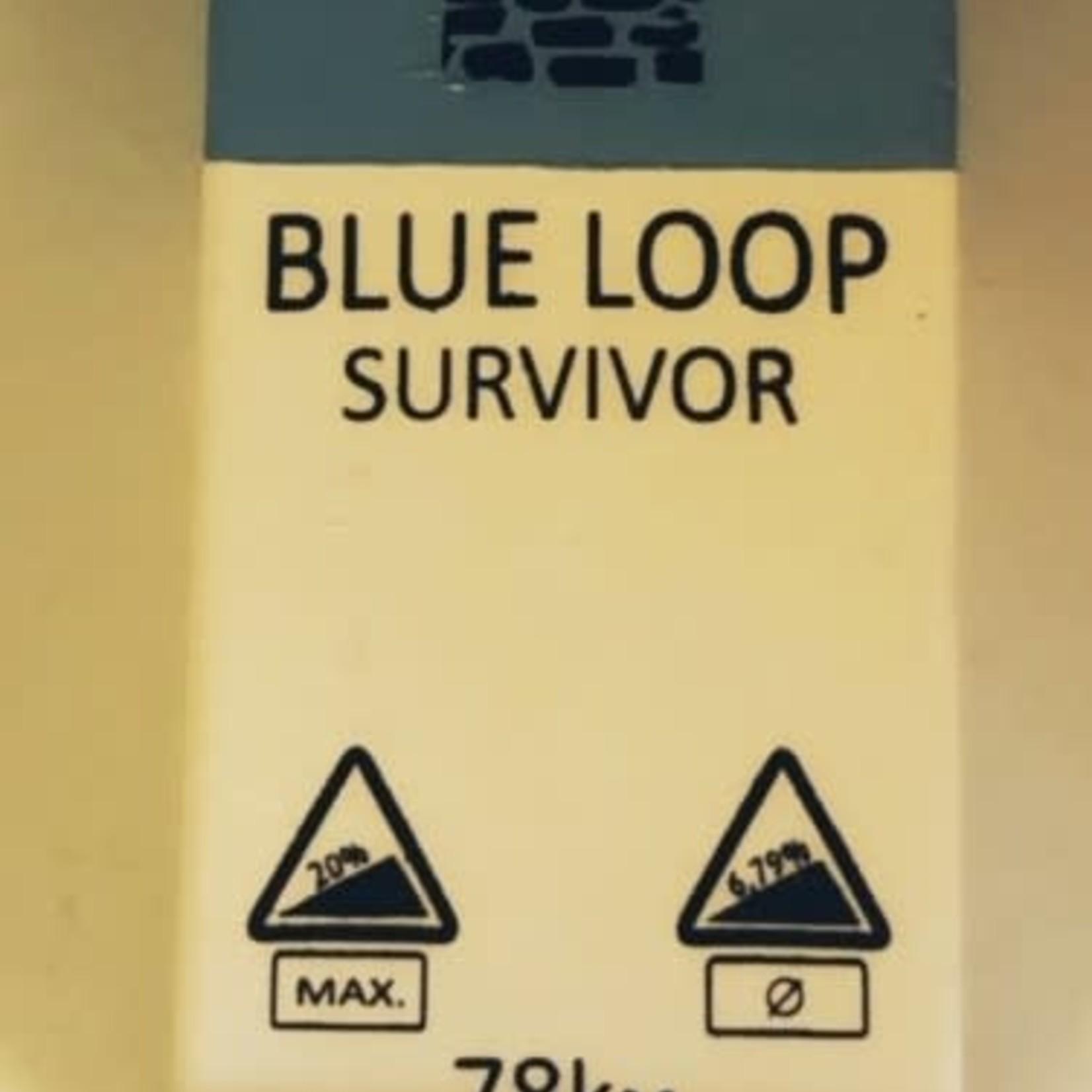 Milestone blue loop