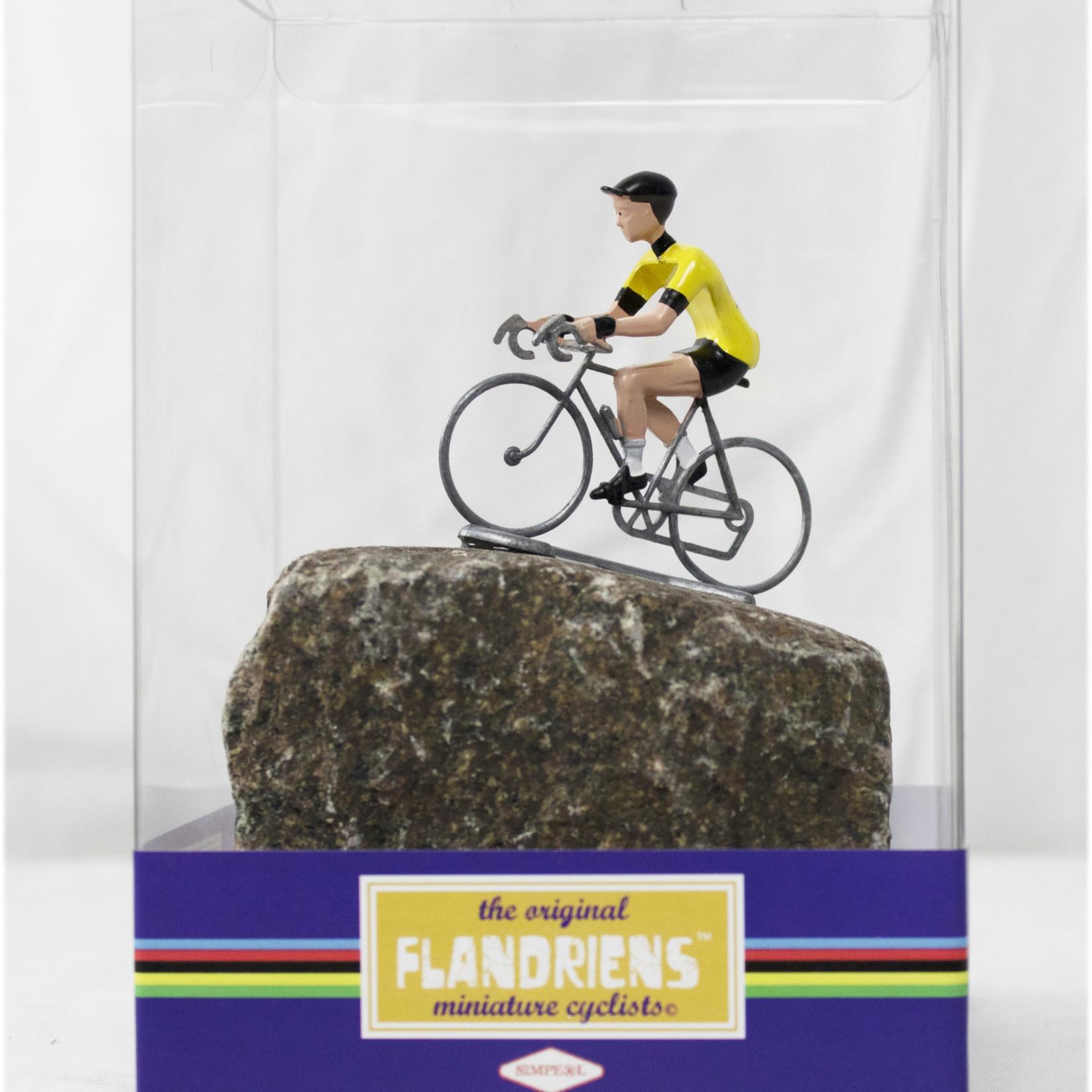 Cyclist on cobble Flandrien