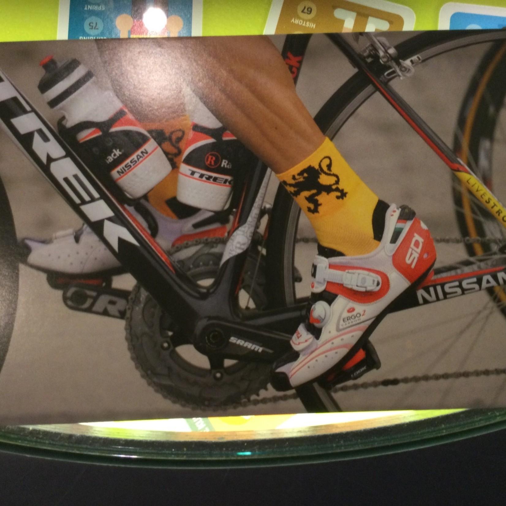 Postcard 'Ronde van Vlaanderen'