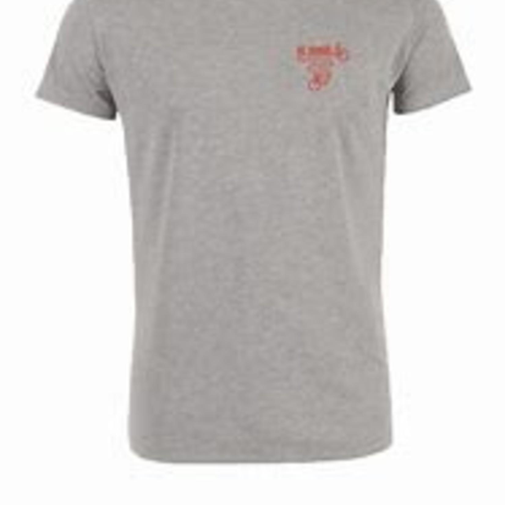 T-shirt 'De Ronde' (grijs)