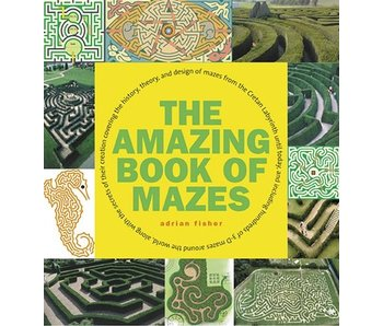The Amazing Book of Mazes - Tweedehands