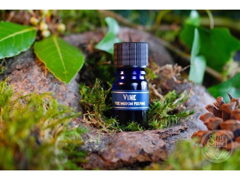 Star Child Parfum Wijnstok (Vine)