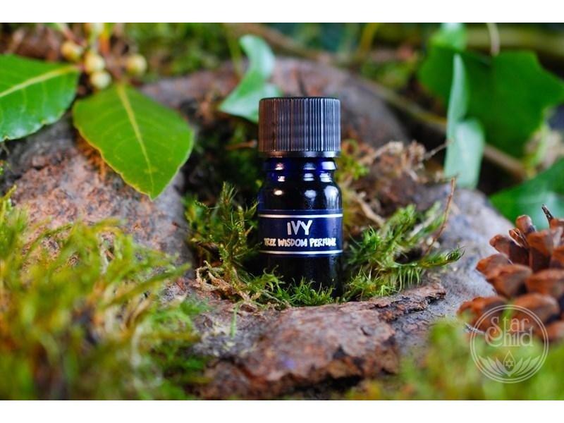 Star Child Parfum Klimop (Ivy)