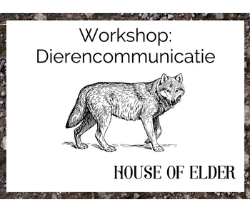 Workshop: Dierencommunicatie