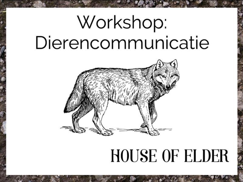 Workshop: Dierencommunicatie 27 juni 2020