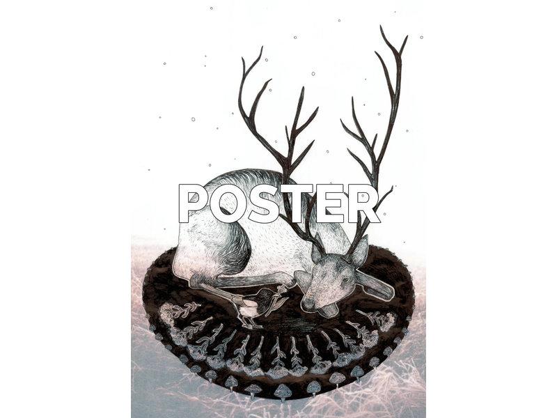 Poster - Ekster - (Solawende 2019)