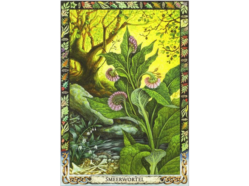 Carr-Gomm, Philip The Druid Plant Oracle