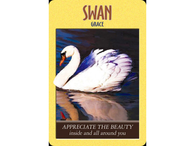 Steven Farmer Power Animals Oracle Cards
