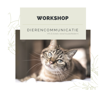 Workshop: Dierencommunicatie 22 aug 2020