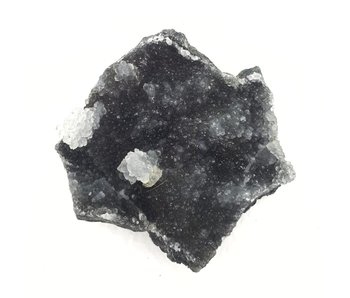 Zwarte Apofyliet ruw