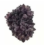 Amethist Cluster Groot