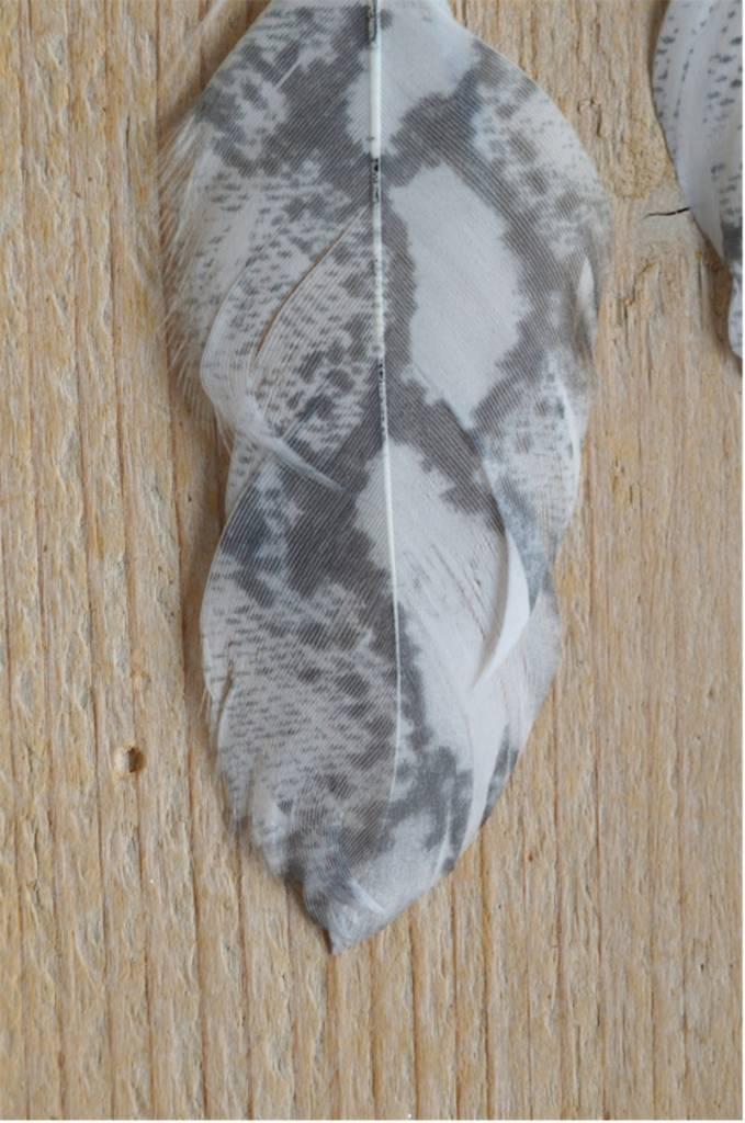 Witte dierenprint veeroorbellen