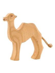 Ostheimer Camel small