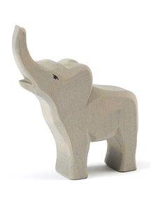 Ostheimer Elephant smal trumpeting new