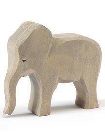 Ostheimer Elephant cow new