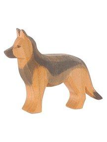 Ostheimer Duitse herdershond