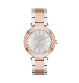 DKNY horloges Stan Rd Rg Ss B - NY2335