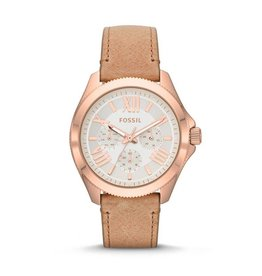 Fossil horloges Md Rd Rg Snd Strp - AM4532