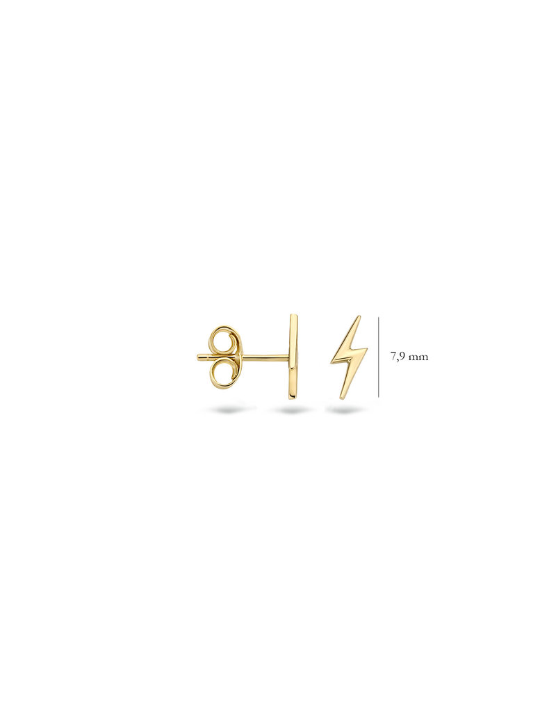 Blush 14 kt Blush Oorknoppen one 14K Yellow gold  - 7249YGO