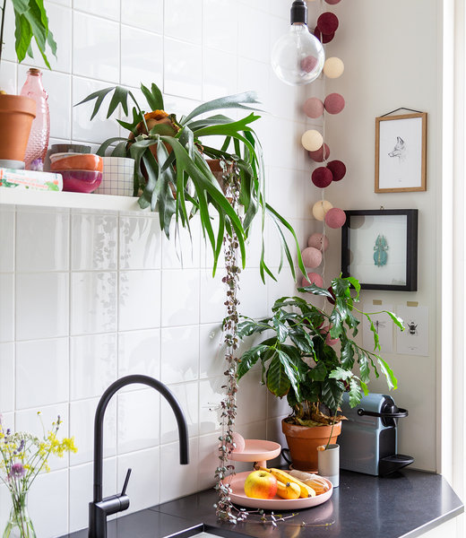 Inspiration | Kitchen | Regular Rosegarden String Light