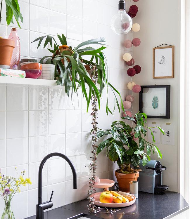 Inspiratie | Keuken | Regular Rosegarden Lichtslinger