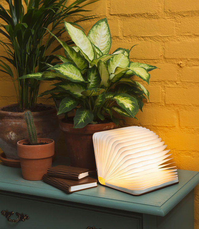 LEDR Inspiration   Living Room   Book Lamp 5
