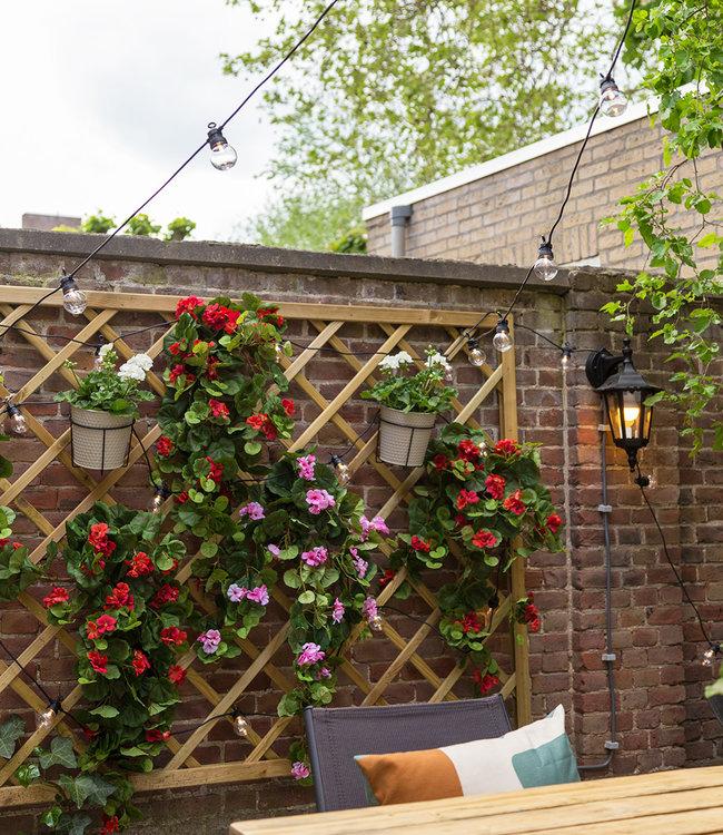 COTTON BALL LIGHTS Inspiration   Garden   Outdoor  Regular Patio 7
